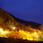 神奈川湯河原