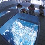 夏休みはココで決まり!子供が喜ぶ関西旅行おすすめ7選