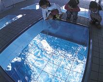 夏休みはココで決まり!子供が喜ぶ関西旅行おすすめ12選
