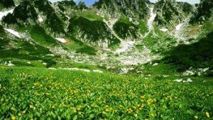 夏休みはココで決まり!子供が喜ぶ長野旅行おすすめ12選