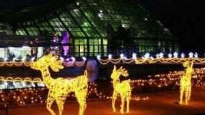 2018年関西のクリスマスイベント、子供向けならココ!20選