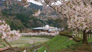 花見&バーベキューならココ!京都のイチ押しスポット8選